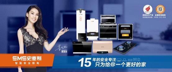 喜讯|热烈祝贺史麦斯电器通过两大体系认证