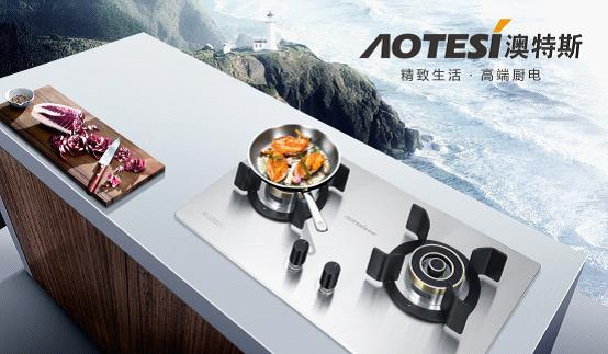 澳特斯电器 让您在料理中也能尽显优雅魅力