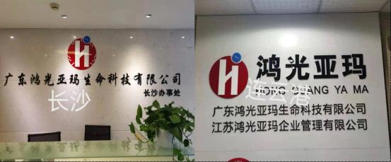 广东鸿光亚玛携手沈阳加华亚马逊,合力布局湖南和天津市场